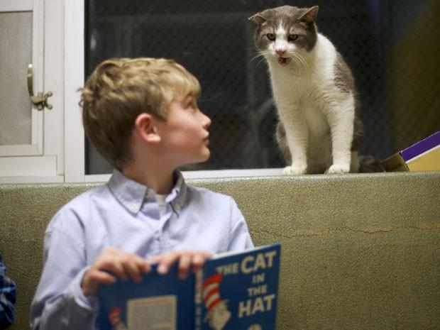 Garoto observa um dos gatos do abrigo para animais enquanto lê o livro 'The cat in the hat' (Foto: Mark Makela/Reuters)