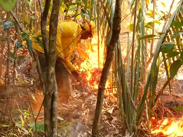 Fogo pode ser visto de longe, dizem moradores (Foto: TV Verdes Mares/Reprodução)