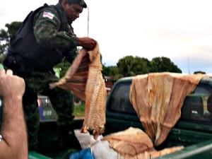 Pescado foi apreendido durante blitz (Fot Cláudia Batalha/Arquivo Pessoal)