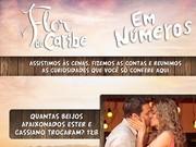 Números! Confira o saldo final da novela (Flor do Caribe/TV Globo)
