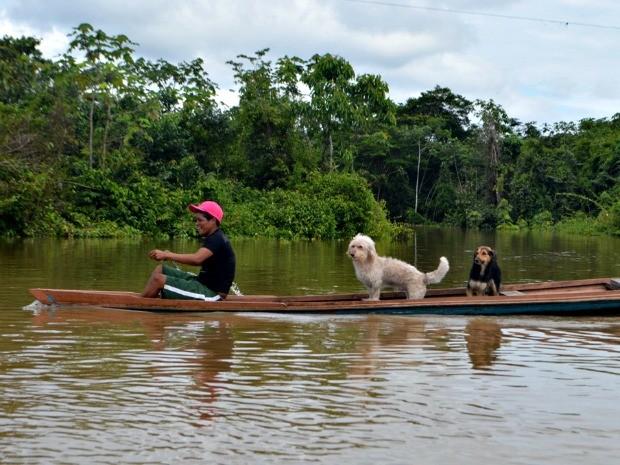 Corpo de Bombeiros acredita que águas do Rio Juruá devem baixar  (Foto: Vanísia Nery/ G1)