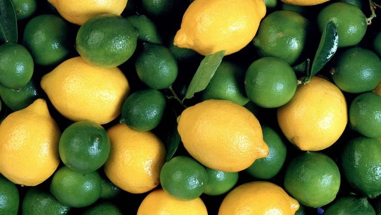 agricultura_limão (Foto: Thinkstock)