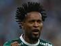 Zé Roberto vê Palmeiras maduro em momento decisivo da temporada