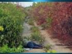 Preso suspeito de matar homem encontrado em ramal em Macapá