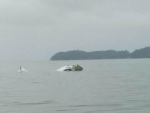 Avião cai no mar em Paraty, na Costa Verde do Rio (Foto: Arquivo Pessoal)