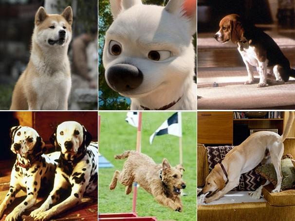 montagem cachorros (Foto: Divulgação)
