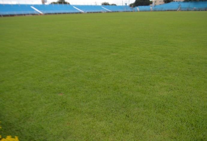 estádio Vitorino Gonçalves Dias (Foto: Divulgação/Londrina Esporte Clube)