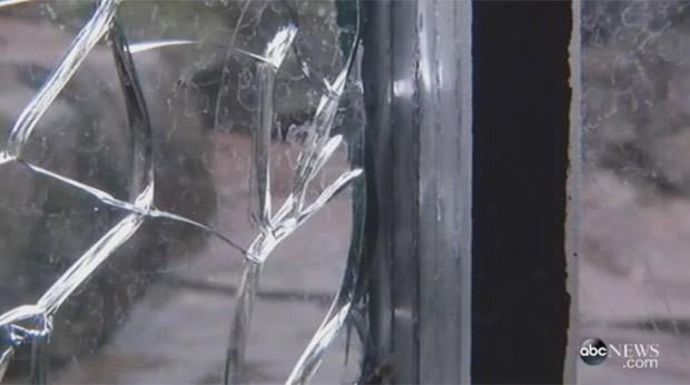 Urso usou pedra para quebrar proteção de vidro de seu recinto em zoo nos EUA (Foto: Reprodução/YouTube/Marquerite Herr)
