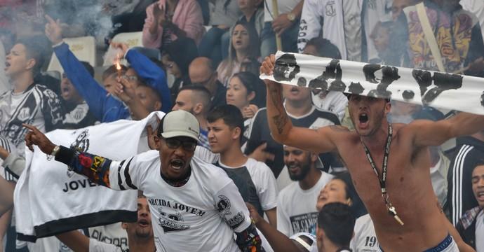 Torcida Ponte Preta (Foto: Raul Sauan/ PontePress)