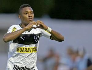 Vitinho gol Botafogo Friburguense (Foto: Satiro Sodré / Agif)