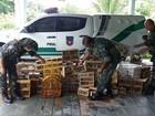 Batalhão Ambiental apreende mais de 200 aves na cidade de Arapiraca, AL