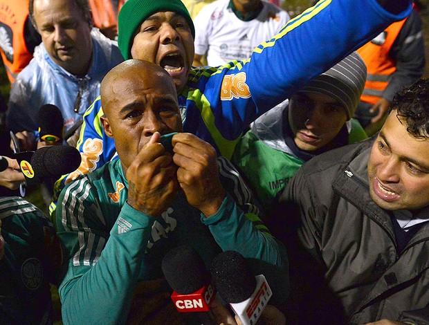 Marcos Assunção, Palmeiras, Comemorando (Foto: Marcos Ribolli / Globoesporte.com)