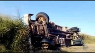 Caminhão carregado com gado tomba na BR-179 entre Machado(MG) e Alfenas (MG)
