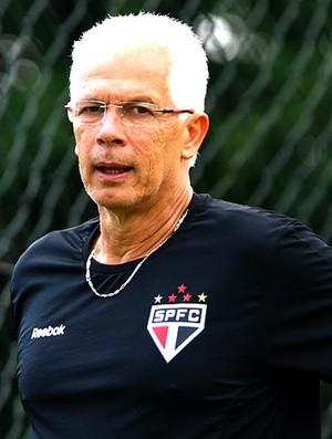 Leão no treino do São Paulo (Foto: Luiz Pires / VIPCOMM)
