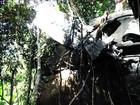 Corpos das 4 vítimas de queda de avião são resgatados de mata em MT