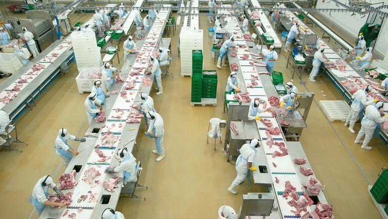 com as ações do PNDS, o consumo de carne de porco no Ceará subiu de 4,5 quilos em 2010 para 7,5 em 2015 (Foto: Divulgação/ABCS)