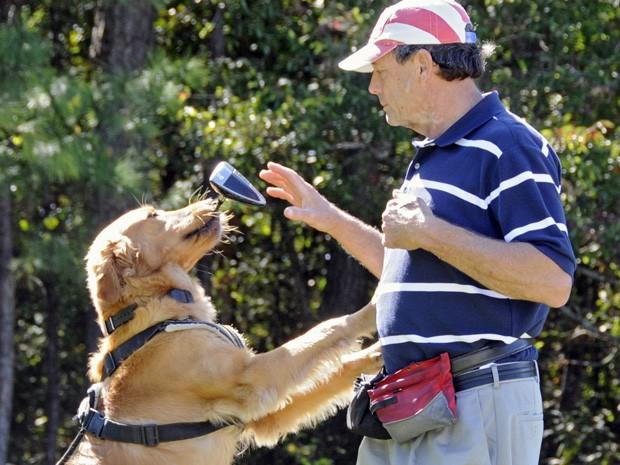 Presidente da organização, Rick Kaplan, treina cães em partida de golfe.  (Foto: AP Photo/The Sun News, Charles Slate)