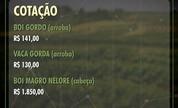 Saiba como estão as cotações do campo na região de Prudente (Reprodução/TV Fronteira)