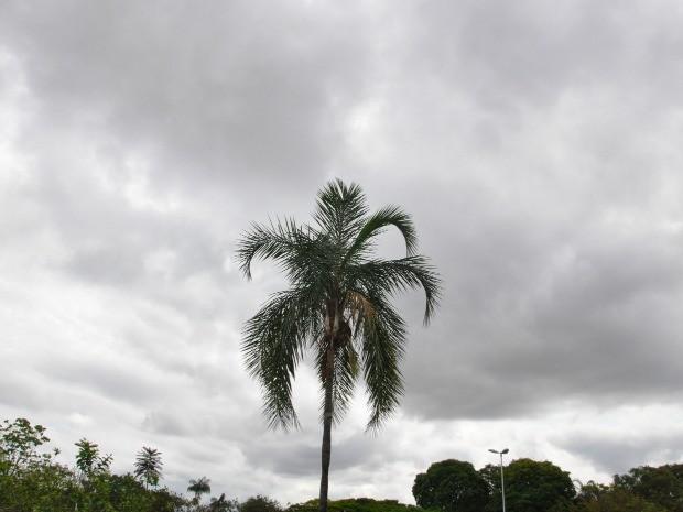 Em Campo Grande as temperaturas devem variar entre 18°C e 32°C, nesta segunda, diz Inmet (Foto: Isabela Cavalcante/G1 MS)