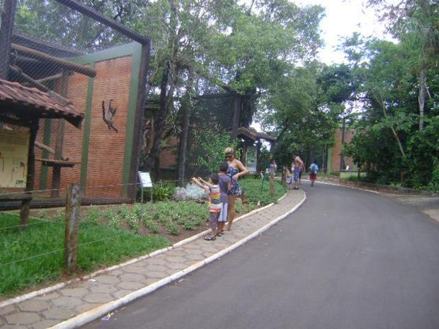 O zoológico de Bauru tem a disposição dos visitantes mais de 800 animais  (Foto: Guilherme Martins/ G1)