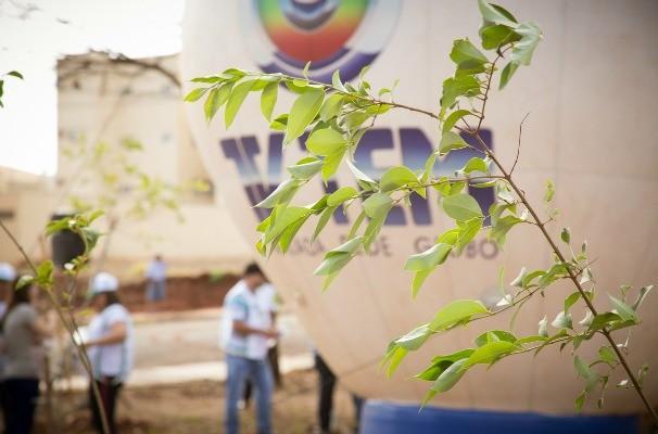 Tem Mais Verde é uma iniciativa da TV TEM (Foto: Rafael Eisinger / TV TEM)