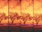 Exposição sobre o céu paraense acontece no Museu de Arte Sacra
