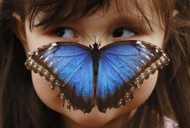 Borboleta pousa no nariz de criança de 3 anos durante sessão de fotos para a abertura de uma exibição sobre os animais no Museu de História Natural de Londres, nesta segunda-feira (25). A exibição começa na sexta-feira (29), e vai reunir cerca de 400 mariposas e borboletas vivas, originárias de climas tropicais. (Foto: Luke MacGregor/Reuters)
