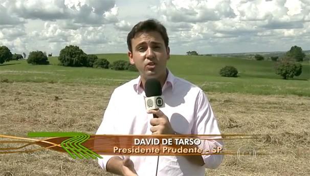 O repórter David de Tarso em matéria exibida no Globo Rural (Foto: Reprodução/TV Fronteira)