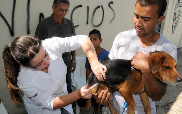 Prefeitura de Piracicaba inicia campanha de vacinação contra raiva neste sábado (11) (Foto: Adilson Franco Cardoso/Prefeitura de Piracicaba)