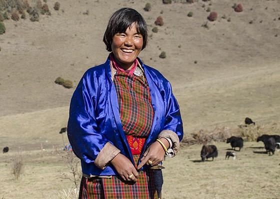 Uma camponesa do interior cuida, com sorriso nos lábios, de seus iaques  (Foto: © Giselle Paulino))