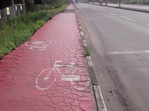 Trecho da ciclovia na Avenida Francisco Rodrigues Filho está esburacado e com desníveis (Foto: Maiara Barbosa/ G1)