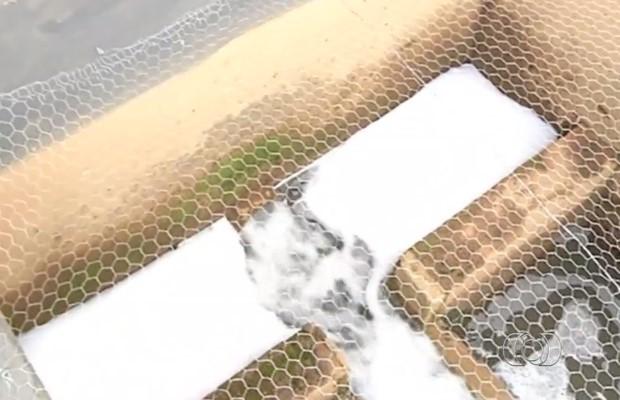 Com contaminação, espuma se forma sobre a água do Rio Palmital, em Luziânia (Foto: Reprodução/ TV Anhanguera)