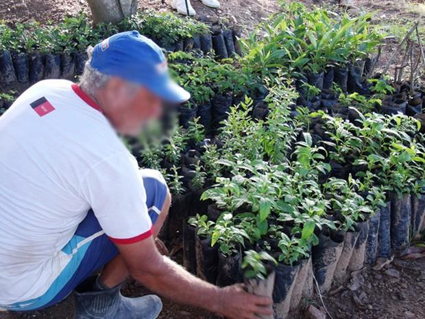 Projeto Muda Vida é uma das formas de ressocialização dos detentos do Serrotão, em Campina Grande (Foto: Divulgação/Seap)