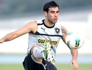 Herrera no treino do Botafogo (Foto: Satiro Sodré / Agif)