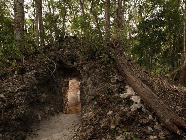 Sala com as pinturas estava cercada por árvores na Guatemala (Foto: Tyrone Turner/National Geographic/Divulgação)