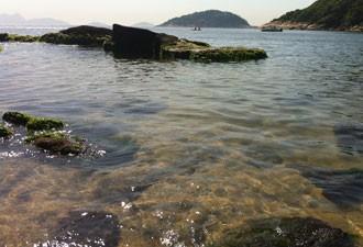 Praia Vermelha, na Urca, está própria para banho. (Foto: Daniel Silveira / G1)