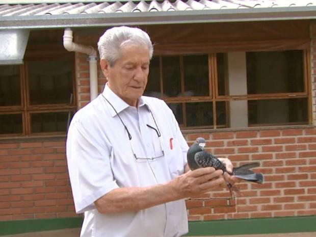 Pombal de Gilberto Cassiolato tem 250 aves em Casa Branca (Foto: Eder Ribeiro/ EPTV)