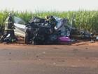 Empresário de Ribeirão Preto morre em vicinal após batida com caminhão