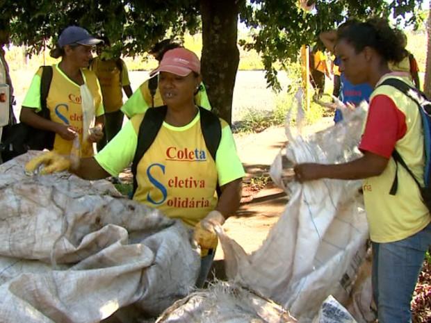 Furtos a sacolas de recicláveis gera transtornos à cooperativa de Araraquara (Foto: Rodrigo Sargaço/EPTV)