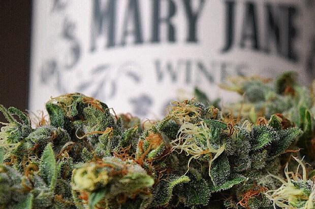 Vinho com extrato de maconha, da Mary Jane Wines (Foto: Divulgação)