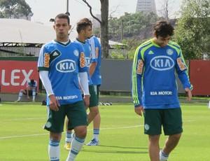 Wendel Valdivia Palmeiras (Foto: Gustavo Serbonchini)