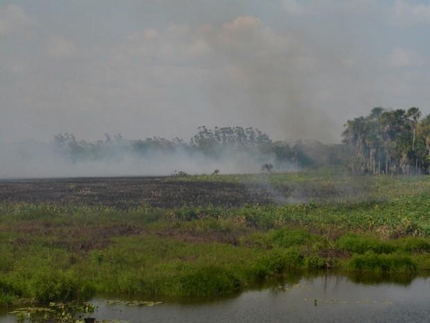 Fogo atinge área da Lagoa dos Índios, na Zona Oeste de Macapá (Foto: Jéssica Alves/G1)