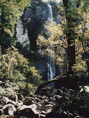 Cascata da Forqueta, em Maquiné, no Litoral Norte do RS (Foto: Divulgação/Prefeitura Maquiné)