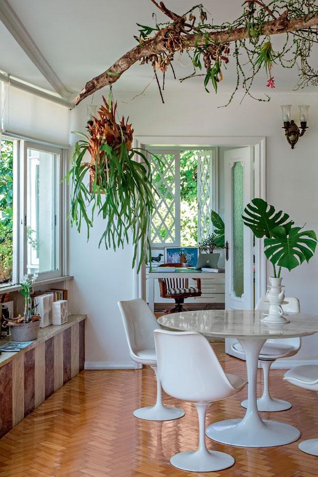 Decoração com plantas: 17 ideias para ter um jardim em casa (Foto: Divulgação)
