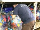 Polícia apreende veículo com 170 caixas de cigarros contrabandeados