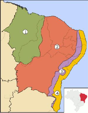 Nordeste e suas sub-regiões | Geografia física | Geografia