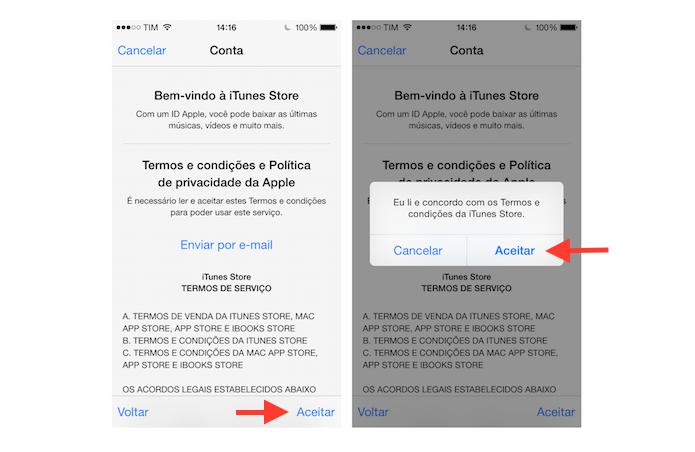 Aceitando os termos de uso do iTunes para alterar o país na App Store do iOS (Foto: Reprodução/Marvin Costa)