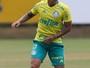 Com Dudu em campo, Palmeiras vence jogo-treino contra o Juventus