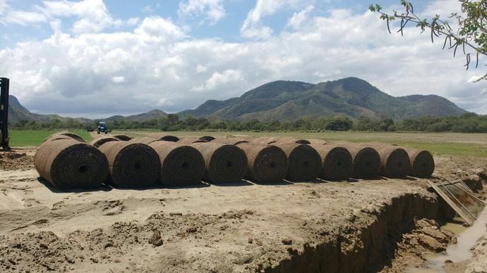 Rolo grama Maracanã (Foto: Divulgação)