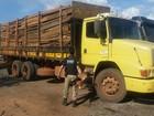 PRF apreende caminhão que transportava madeira ilegal no Pará